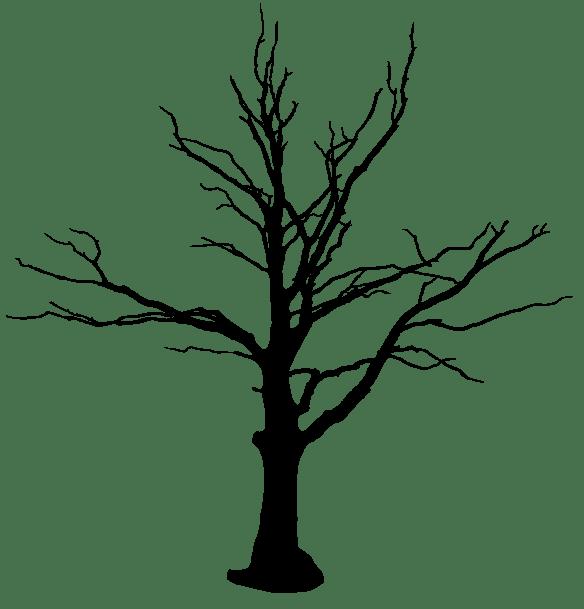 tree_004